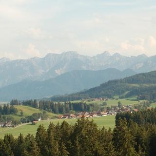 Panorama-Blick: Ammergauer Gebirge.