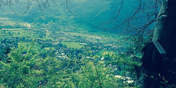 Blick vom Altdorfer Bannwald ins Tal