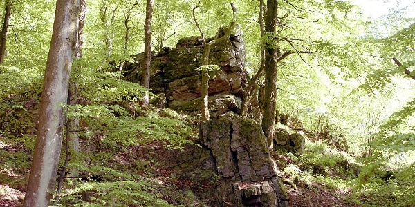 vermutete Ruine einer Römerburg