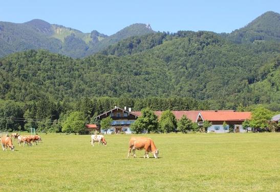 Großrachlhof Grassau/Chiemgau