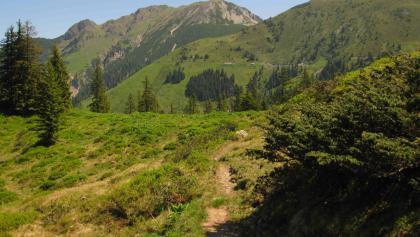 Am Fieberbrunner Höhenweg