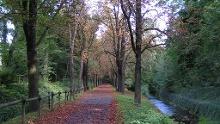Rundgang entlang der Wallanlagen Goslar