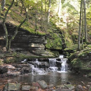 Monbachschlucht - Wasserfall