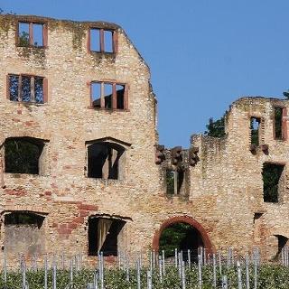 Burgruine Landskorn