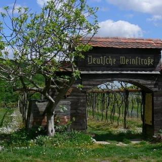 Eine Miniaturausgabe des Deutschen Weintors steht in den Weinbergen oberhalb Schweigen-Rechtenbachs.