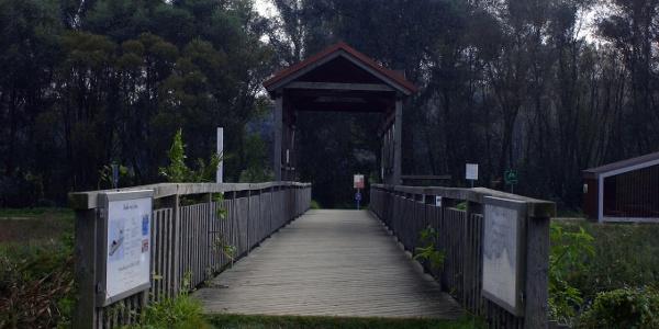 Die Brücke von Andau