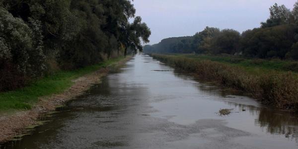 Der Einser-Kanal