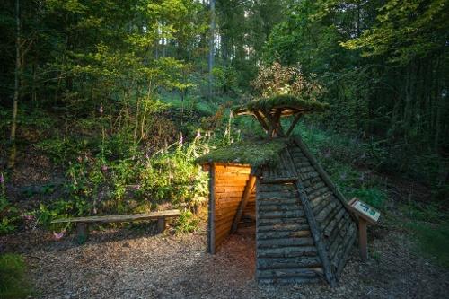 Schmallenberg: Waldarbeiter- und Försterpfad in Latrop