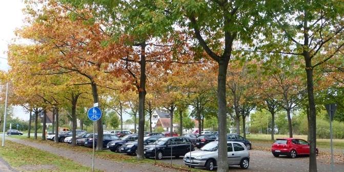 parkplatz beim friedhof auf dem d ren in paderborn parkplatz. Black Bedroom Furniture Sets. Home Design Ideas