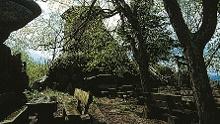 Kösseine – der Ziegenberg