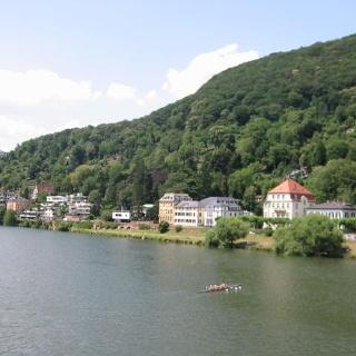 Wir wandern auf den Heiligenberg, zu dessen Füssen der Neckar fließt.