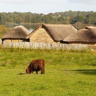 Die rekonstruierten Wikingerhäuser des Museums Haithabu