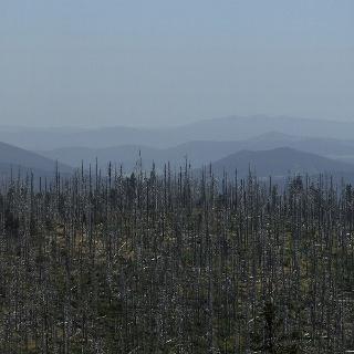 Die silbrig-märchenhafte Landschaft im Nationalpark überwältigt immer wieder mit Ausblicken.