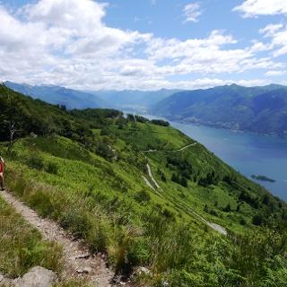Wandern hoch über dem Lago Maggiore