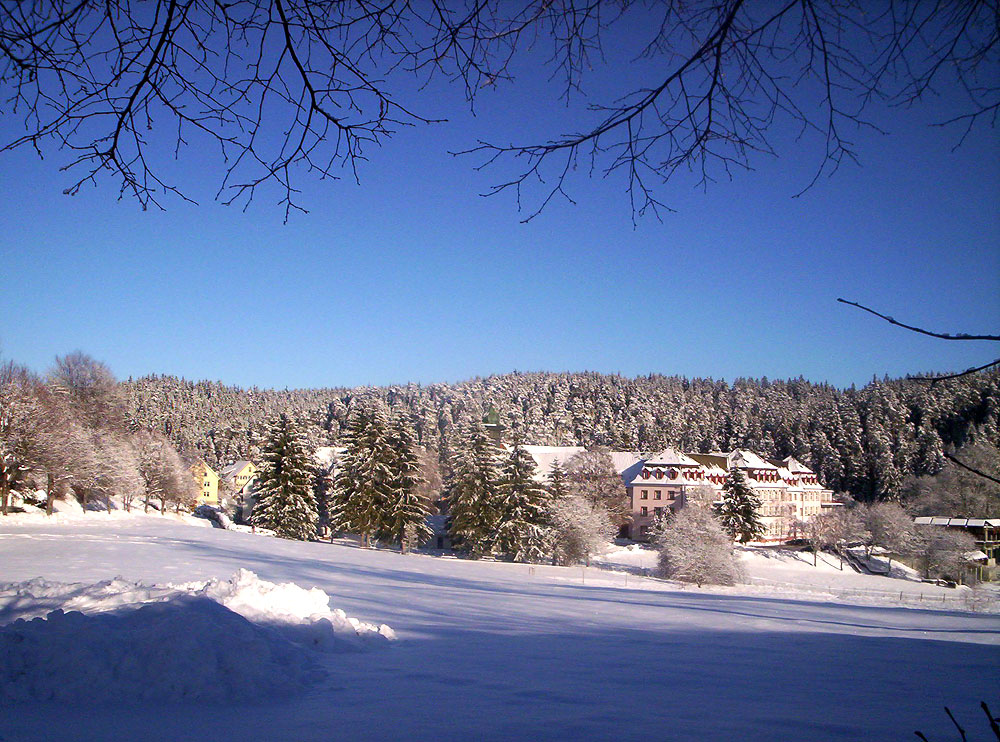 Friedenweiler Winter