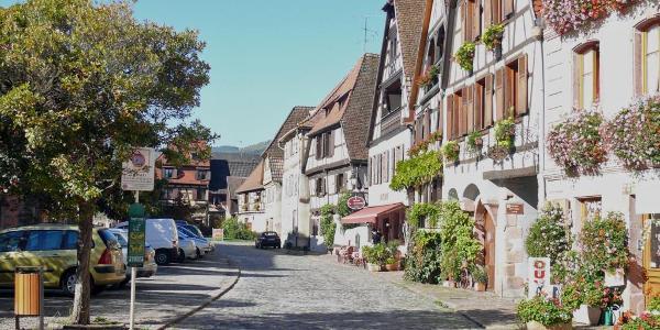 Bergheim - ein schönes kleines Städtchen