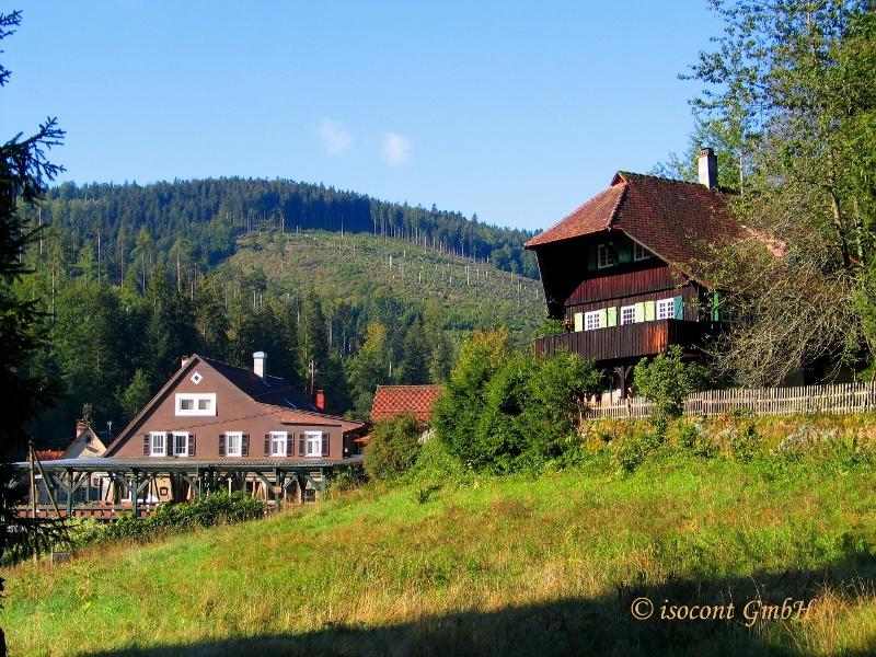 Wetter Dobel Schwarzwald