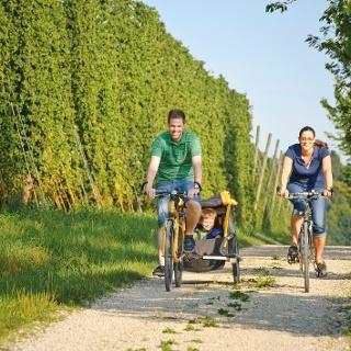 Radfahren im Hopfenland Hallertau