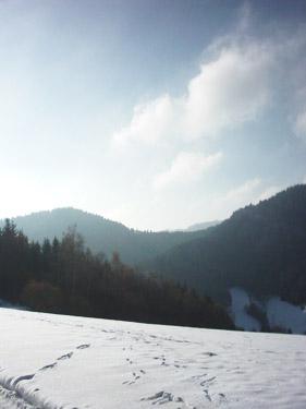 Bei unserer Panoramatour bietet sich auch ein Ausblick ins Erzenbachtal.