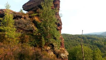 Hondjesberg