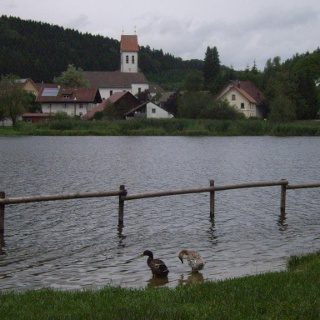 Rachelsee