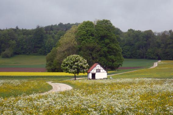 Schutzhütte am alten Brunnen.