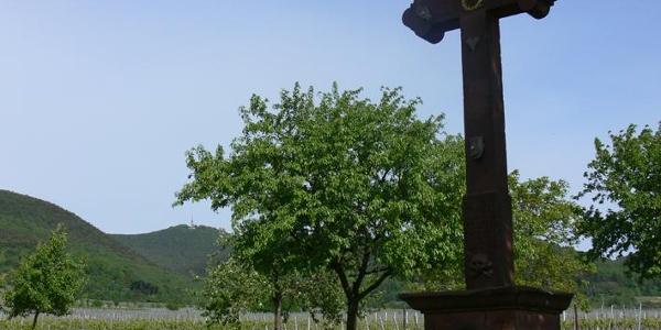 Blick aus der Rheinebene bei St. Martin zur Kalmit, dem höchsten Berg des Pfälzerwalds.