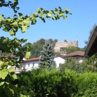 Blick auf Burg Lindenfels.