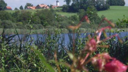 Blick auf den Metzisweiler Weiher - im Hintergrund Eintürnenberg.