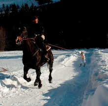 Ski Joring - Adventoura High Tatras