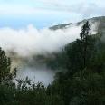 Passatwolken im Orotavatal