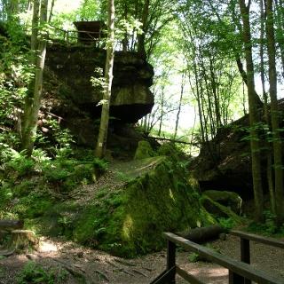 Auf dem Schlosswald-Weihermühle-Weg