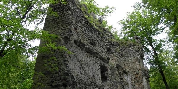 Im Burghof steht die hoch aufragende Südwand des Wohnturmes der Ruine Kargegg