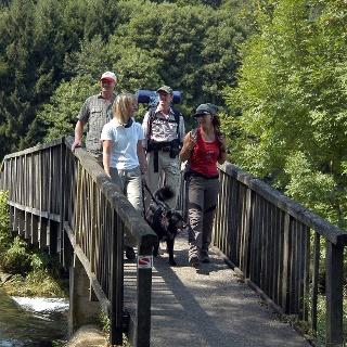 Wanderer auf der Schafsbrücke