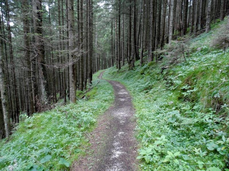 Der Schattseitweg