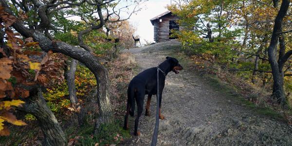 Vor der Schutzhütte Schrock
