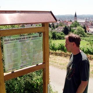Wir wandern und lernen auf dem Letzenberg .