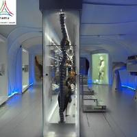 namu (Museum Natur, Mensch und Umwelt)