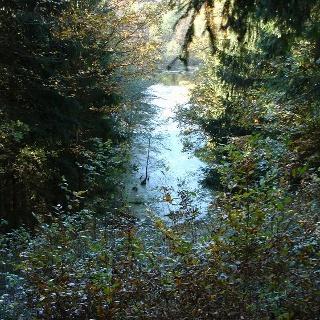 Eingebettet in das ehemals als Jagdgarten genutzte Gebiet fließt der Strom.