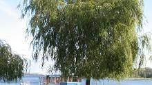 Um den Krakower See
