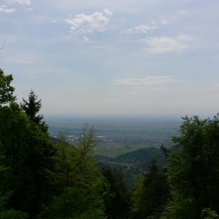 Diese herrliche Aussicht wird uns an der Schutzhütte nahe des Felsenmeeres an der Kalmit geboten.