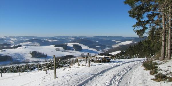 Ausblick oberhalb von Altenilpe im Schnee