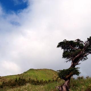 Kammgipfel 981m am Rückweg