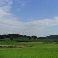 Die Landschaft hinter Blaibach.