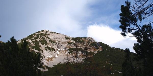 Erster Blick zum Hochsengs ~1450m