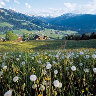 Dieses Bild von Westendorf zeigt sich uns vom Thumerhof aus.