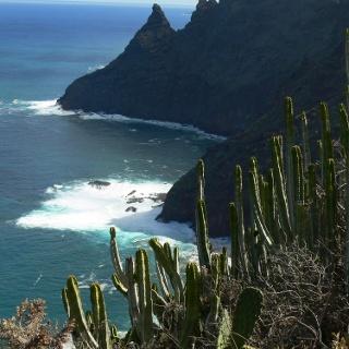 Blick vom Aussichtspunkt auf die Nordküste (2)