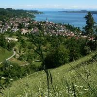 Blick von einer Kehre des Otto-Hagg-Wegs auf Sipplingen und den Bodensee.