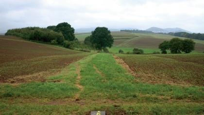 Ursprüngliche Wiesen- und Hügellandschaft im Waldecker Land.