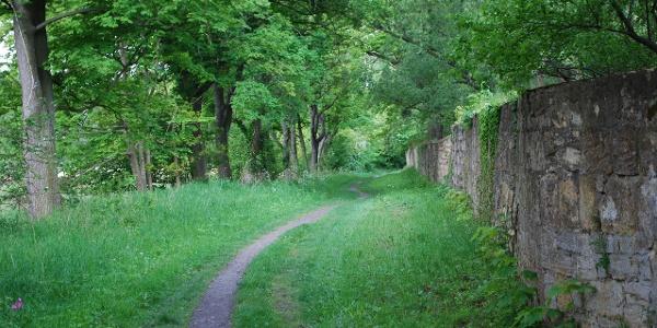 Pfad entlang der Klostermauer